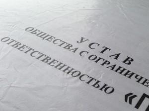 Сшивка Устава Образец - фото 8