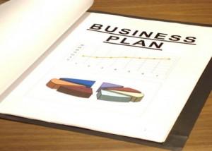 описание бизнеса