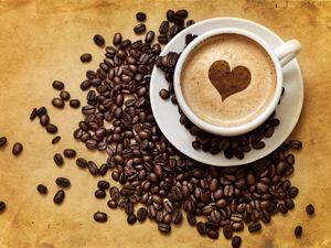 Составление бизнес плана образец кафе
