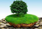 Сроки сдачи декларации по земельному налогу