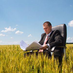 Кто может применять единый сельскохозяйственный налог