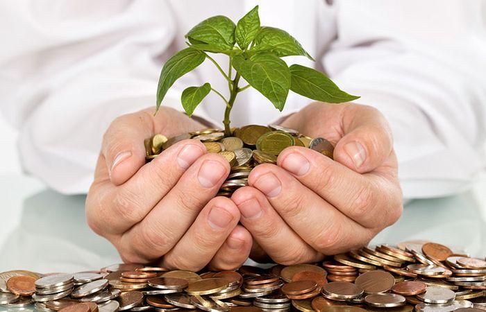 Участники паевых инвестиционных фондов (ПИФ)