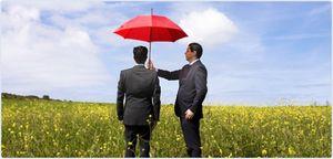 Закон о защите прав инвесторов