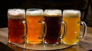 Как открыть магазин разливного пива Кружка, Банка, БирМаг по франшизе