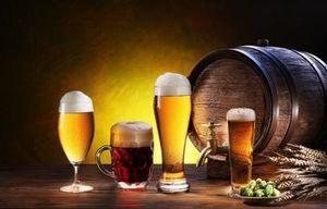 Преимущества использования франшизы при открытии магазина разливного пива
