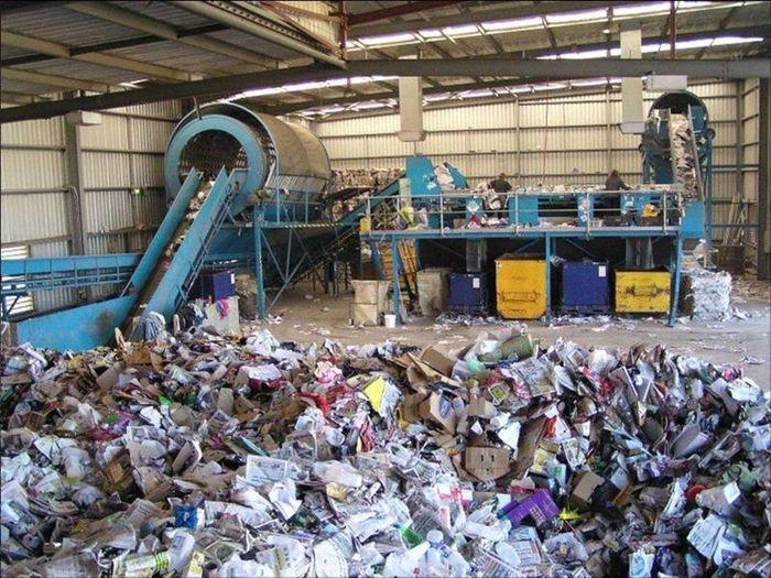 Маркетинговая часть бизнес-плана завода по переработке мусора