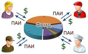Правила выбора паевого инвестиционного фонда